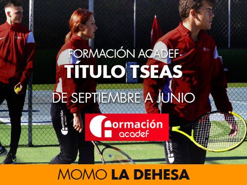 TITULO TSEAS FORMACIÓN ACADEF EN MOMO