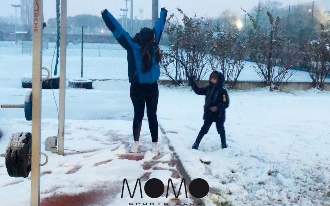 CAMPAMENTO DE BLANCA NAVIDAD EN MOMO LA DEHESA